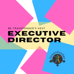 """White background with bright blue and pink squares. """"Be TransPonder's Next Executive Director"""" rests on top of a pale yellow banner."""